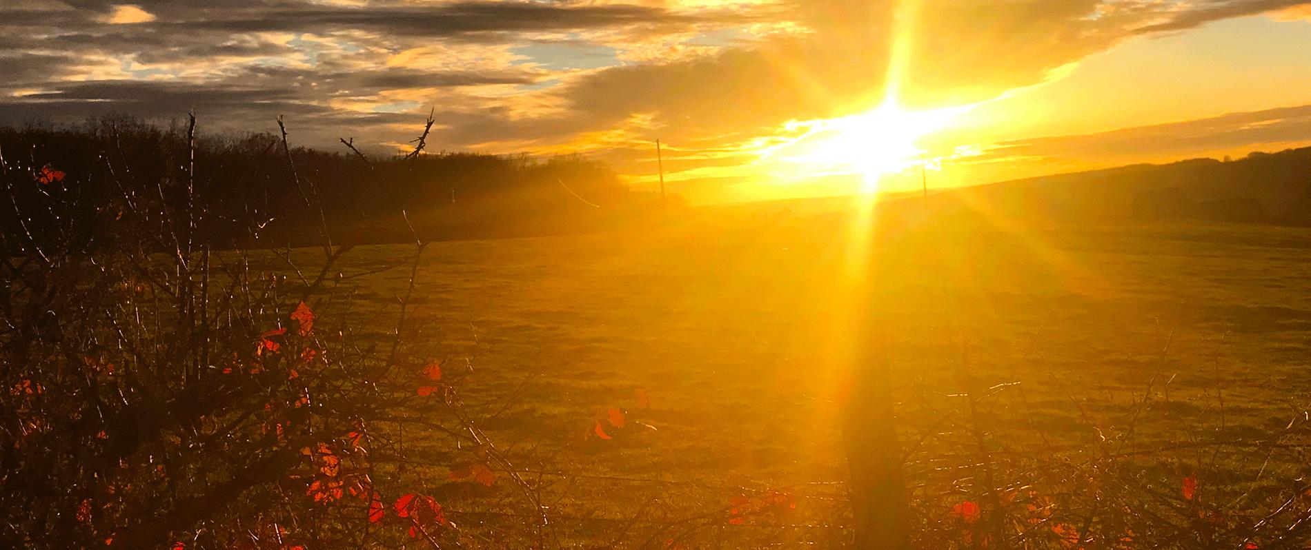 Coucher de soleil sur Cortot